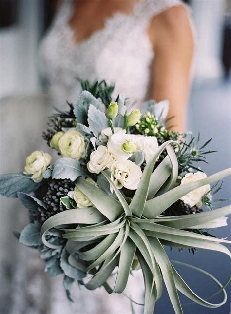 """345 best images about Say """"I DO"""" with Air Plants on"""