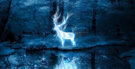 Otter Or Squirrel? Discover Your 'Harry Potter' Patronus