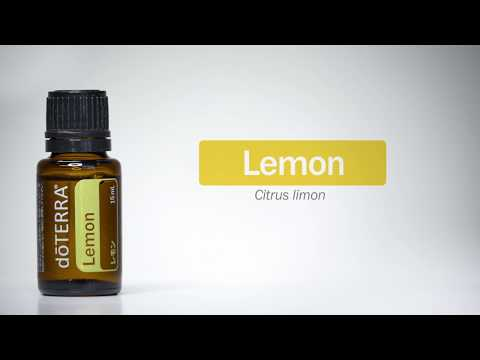 Best Essential Oil Blends for your Diffuser | Family Food