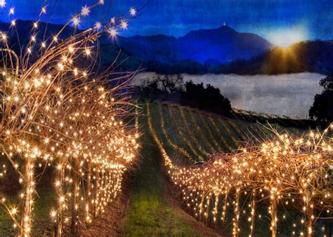 25 Great WinterFest Things To Do in Temecula Valley