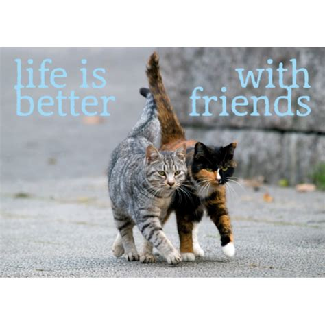 Ansichtkaart, Life is better with friends - Embrace the World