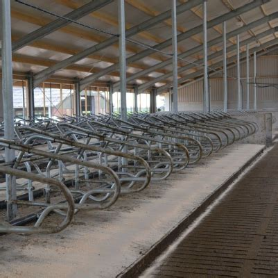 Single waterbed   Spinder Dairy Housing Concepts
