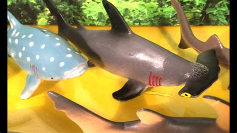 8 DIFFERENT TYPES OF SHARKS - SURPRISE ANIMAL SHARK