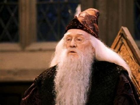 Looking at Some of the Great Character Voices in the HARRY