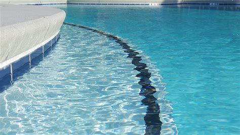 Pool Service: Not Hiring Them With Get You Disease   Pool