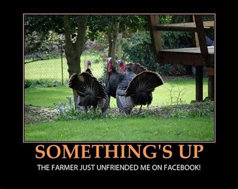 12 Really Hilarious and Funny Turkey Thanksgiving Memes