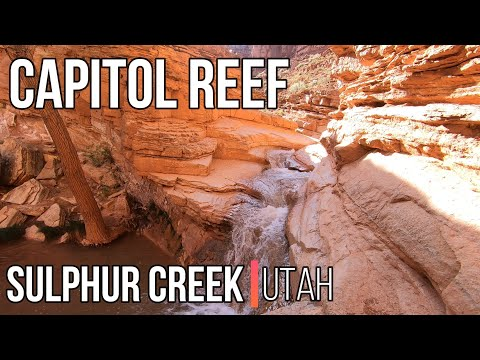 Capitol Reef National Park travel   The Southwest, USA