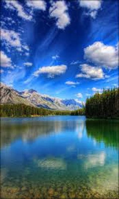 Free Nature live Wallpapers 3D APK Download For Android