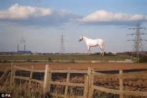 Angel of the South: Giant white horse will tower 164ft